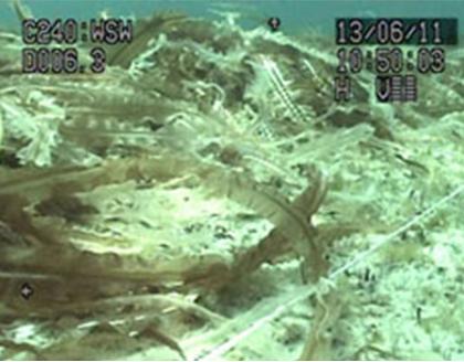 水中カメラシステム